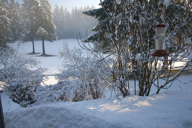 sun-and-snow